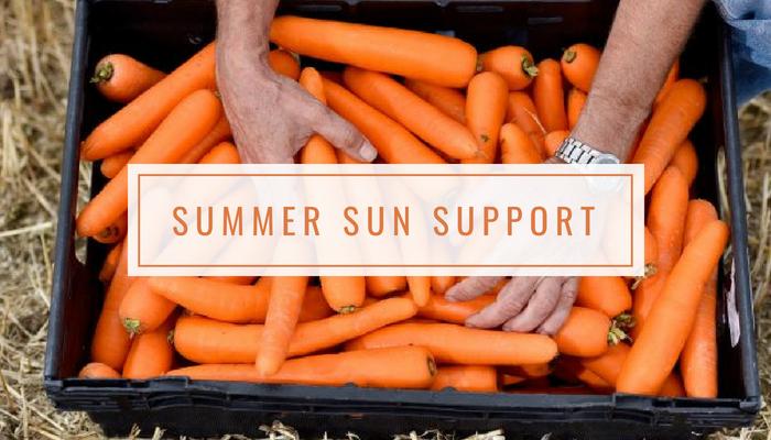 Summer Sun Support